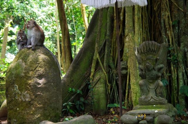 majmok szoborral