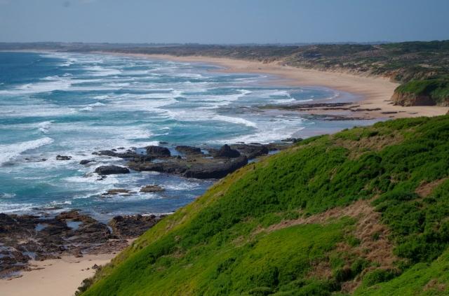 Bass coast3